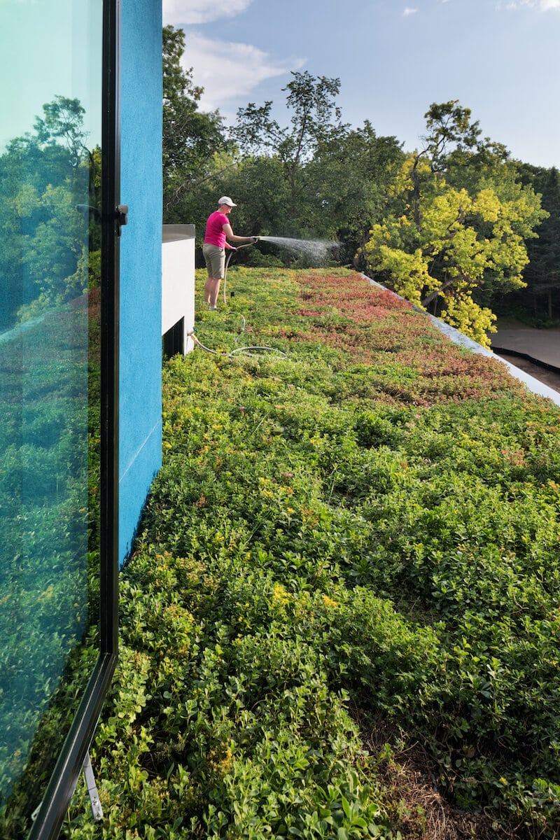 green roof in Minneapolis by sustainable9